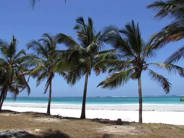чем раличаются пляжи мамбасы